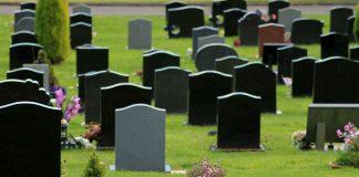Como Montar um Cemitério de Animais