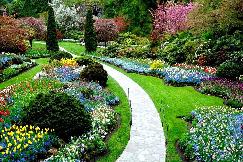 Como Abrir Uma Empresa de Paisagismo e Jardinagem