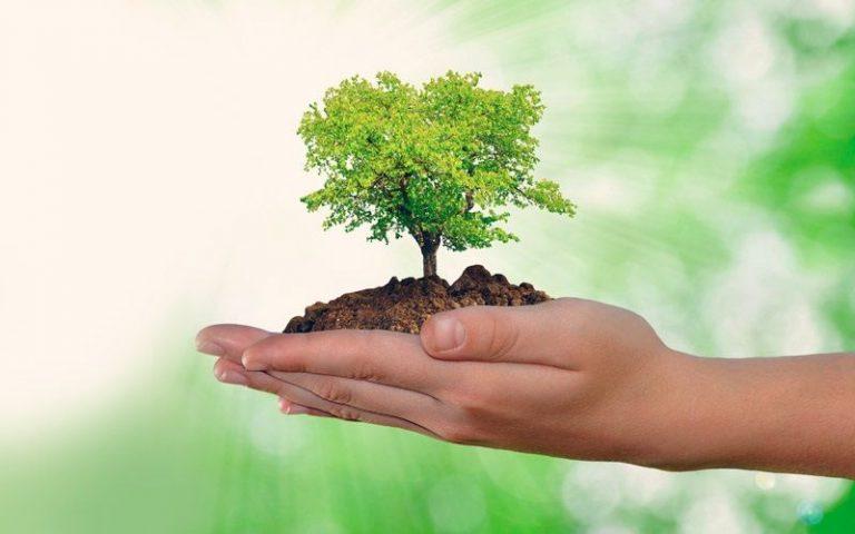 Responsabilidade socioambiental das empresas [O que é e como fazer]