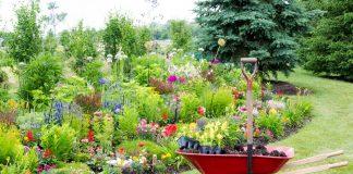 Paisagismo e Jardinagem – 7 Dicas Para se Dar Bem