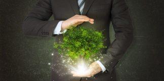 Sustentabilidade nas pequenas empresas