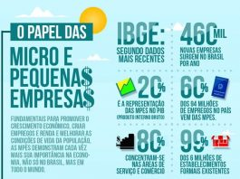 Infográfico Pequenas Empresas no Brasil