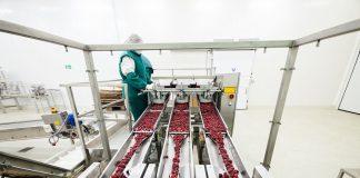 Como Montar Uma Fábrica de Polpa de Frutas