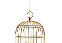 Fábrica de Gaiolas Para Pássaros