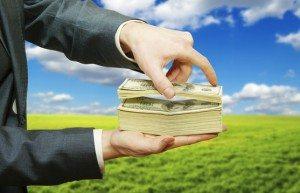 4 Dicas Para Investir no Confinamento de Gado de Corte